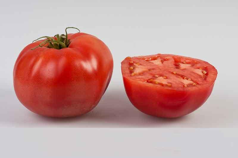 گوجه فرنگی استرین B