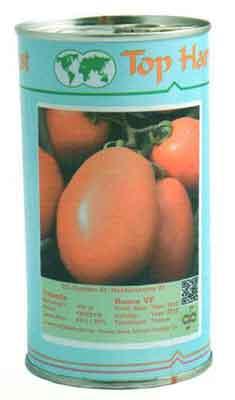 بذر گوجه فرنگی روما
