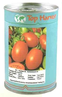 بذر گوجه فرنگی