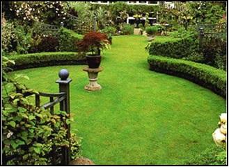 ابزار طراحی فضای سبز