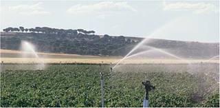 سیستم آبیاری بارانی